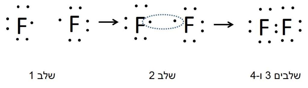 שלבים ברישום נוסחת ייצוג אלקטרונית של מולקולה דו אטומית