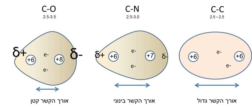 השפעת קוטביות הקשר הקוולנטי על אורך הקשר ואנרגיית הקשר