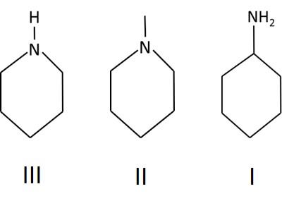 תרגיל מסיסות של חומרים עם מולקולות גדולות