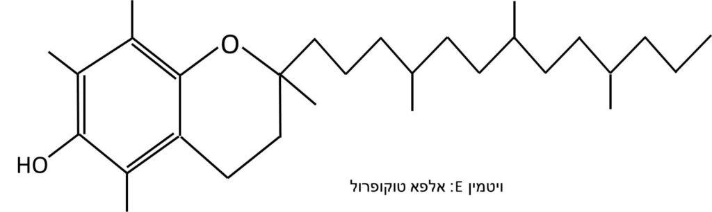 ויטמין E