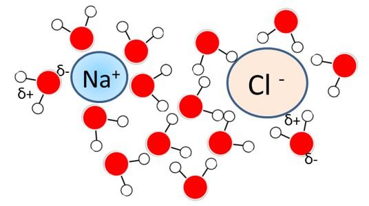 תמיסה של NaCl ברמת המיקרו - מודל